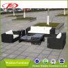 Il sofà stabilito pranzante moderno del rattan ha impostato (DH-772)
