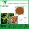 Polvere naturale 50% di Resveratrol di alta qualità del rifornimento della fabbrica