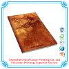 Scomparto Softcover del libro di stampa di derivazione del libro dell'opuscolo di stampa dello scomparto