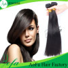 Black Womenのための絹のStraight Virgin Malaysian Human Hair Bundle