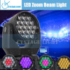 19X12.8W RGBW Osram Zoom LED Moving Head Light