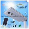 IP65 la durata della vita lunga 10W ha integrato tutti in un giardino del LED che illumina l'indicatore luminoso di via solare per esterno