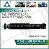 Stoßdämpfer 5006172492 für Renault-LKW-Stoßdämpfer
