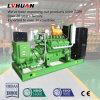 générateur silencieux de gaz naturel de LPG de la CE de 380V 50Hz 3pH 200kVA