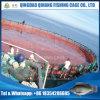 HDPEフレームおよびPEのネットが付いている高品質の魚のケージシステム
