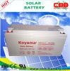 Батарея AGM хранения электрической системы Nps150-12 12V150ah Soalr