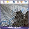 Feux de tuyau en acier galvanisé à chaud pour le transport de l'eau (CZ-RP06)