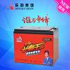 batterie d'acide de plomb rechargeable de véhicule électrique du cycle 8-Evf-24 (16V24AH) profond