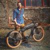 36V of 48V Bijl Elektrische Bicycle/350W Elektrische Bike/E Bicycle/750W E Bike/500W Retro Pedelec, de Dubbele VoorSchok En15194 van de Kruiser van het Strand de Uitstekende Klassieke 250W van W