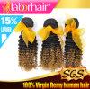 5A de hete Uitbreiding Lbh 115 van het Menselijke Haar van Ombre van de Krul van het Haar van Ombre van de Kwaliteit Kroezige