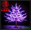 Luz de árvore de decoração colorida LED