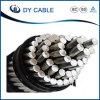 Tipo de arriba descubierto de aluminio trenzado del conductor de conductor de ACSR