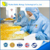 Óleo de semente de abóbora certificado pela FDA / ISO para pressão sanguínea