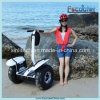 Sales caldo Popular New Design 800W 60V 20ah 2 Wheel Electric Scooter