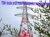 Doppia torretta della trasmissione della sospensione del Traversa-Fiume del circuito di Megatro 750kv