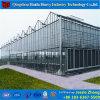 きのこのためのマルチスパンの商業用Hydroponicシステムガラス温室