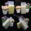 Gefrorene Korn-Vakuumnahrungsmittelplastiktasche