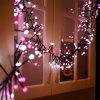 8 Modi imprägniern Kracher-feenhaftes Zeichenkette-Licht des Weihnachtenled