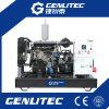 Alta qualidade China Yangdong gerador Diesel de 15 kVA (GYD15)