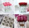 تصميم خاصّ بالأزهار شفّافة واضحة بلاستيكيّة أكريليكيّ زهرة صندوق