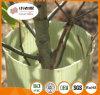 Protezione dell'albero della protezione della vite di Corflute