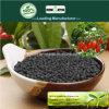 Il carbonio di Kingeta ha basato il fertilizzante composto NPK 15-15-15 per l'erba