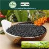 Il carbonio di Kingeta ha basato il fertilizzante composto NPK 28-6-6 per il raccolto