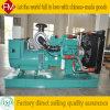 Gruppo elettrogeno diesel di Cummins 250kw/312.5 - standard di emissione