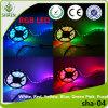 Tira flexible impermeable papular de la luz de tira de Dhgate RGB LED LED