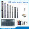 Bombas de água solares da irrigação, bomba solar do sistema de irrigação