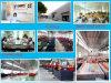 Gemaakt in China, de Scherpe Machines van de Laser van Guangzhou Baisheng