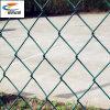 50*50mm, 60*60mm elo da corrente com revestimento de PVC Wire Mesh
