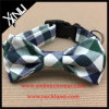 Cane registrabile Bowtie del collare del gatto del cotone dell'animale domestico all'ingrosso