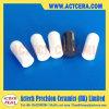 Clavija de cerámica personalizada Pin de Zirconia / Pin de registro / Pin de guía