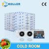 Koude Zaal met Hoogte - dichtheidsVloer Pu en SUS304