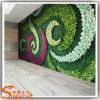 زخرفة بيتيّ اصطناعيّة معمل عشب جدار