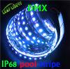 De la tira ideal de IP67 32LEDs hl impermeables 1606, 5V, los 32LED/M, tira ideal del color LED