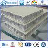 Comitato del favo della vetroresina della superficie ruvida per la parete decorativa