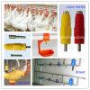 Il pollame automatico gestisce il bevitore del capezzolo della strumentazione della tettoia