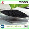 Usine granulée de fabrication de carbones activés au charbon pour la purification de l'air