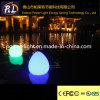 Indicatore luminoso di galleggiamento variopinto ricaricabile decorativo della pesca del LED
