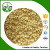 Cor verde do estado NPK 20-15-5 granulado composto do fertilizante