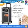 De openlucht Spreker van het Karretje van de Karaoke Draagbare Actieve met de FM van USB BR