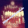 Titanium Nail Gr2 Hot Sale의 석영 Tube와 Dabber