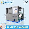 Grande machine de glace de plaque pour le procédé de nourriture (15 tonnes/jour)