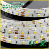 120LED/M W+Ww SMD3528 Flexible LED Strip met CE&RoHS