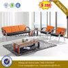 Sofá moderno de cuero de primera para el hogar (HX-CS091)