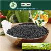 Fertilizzante composto NPK 15-15-15 di Kingeta Biohar per il raccolto