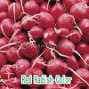 Красный цвет дайкон