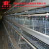 Séries do fornecedor 4 de China um tipo maquinaria de exploração agrícola da gaiola da galinha